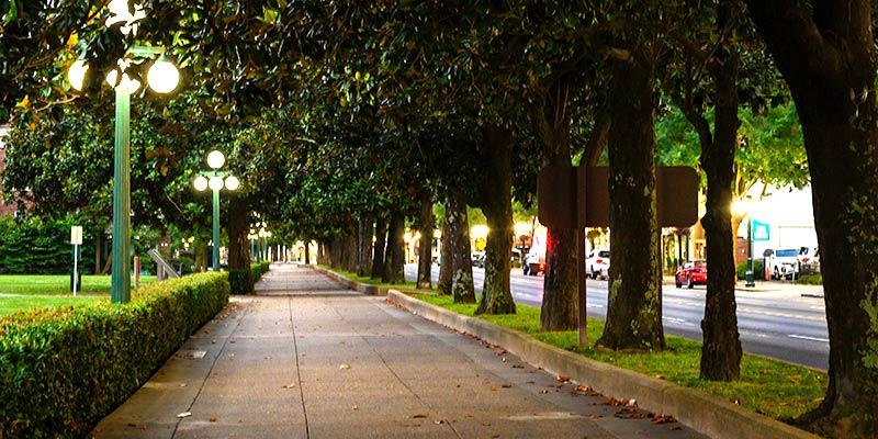 tree-lined sidewalk in Hot Springs AR